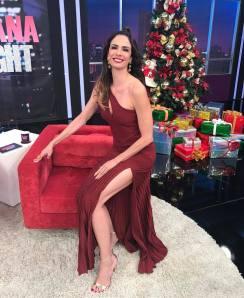 Luciana-Gimenez-Feet-3234391